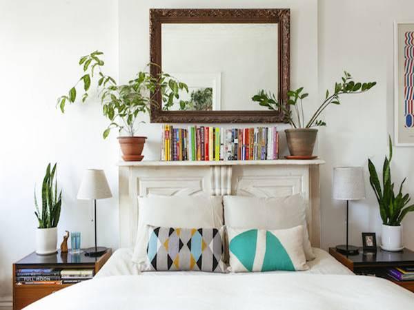 Những lưu ý khi đặt cây phong thủy trong phòng ngủ
