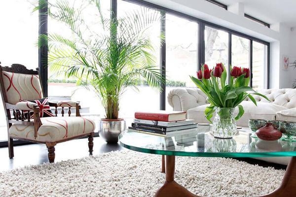 Cách sắp xếp cây cảnh trong nhà mang lại phong thuỷ tốt