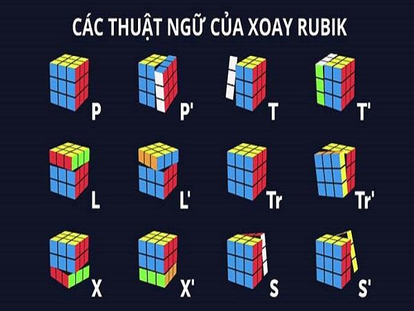 Cách chơi rubik 3x3 dễ hiểu nhất cho người mới chơi